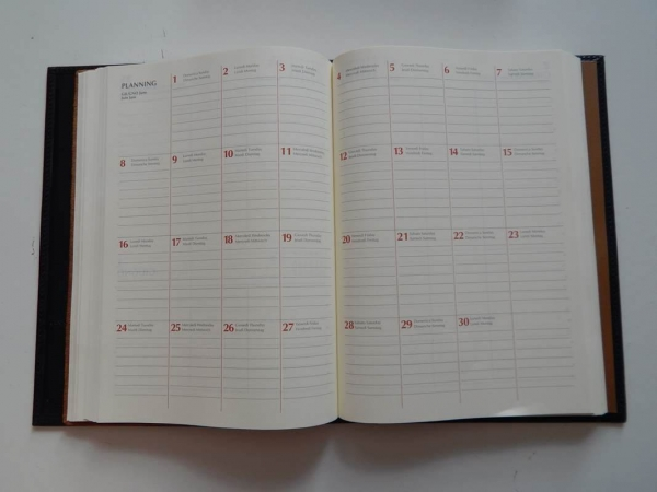 Ferrari 1997 Diary